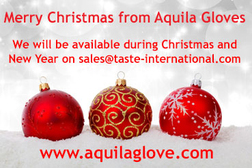 Merry Christmas from Aquila Gloves